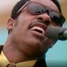 Stevie Wonder en el papel de Stevie Wonder