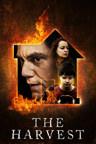El Sustituto (2013)