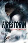 Fuego Cruzado (2013)