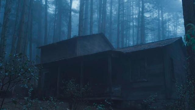 La Cabaña Dentro del Bosque