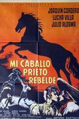 Mi Caballo Prieto Rebelde