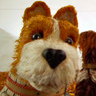 Bill Murray en el papel de Boss, el perro