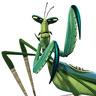 Mantis en el papel de Seth Rogen