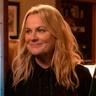 Amy Poehler en el papel de Lisa Carter