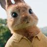 Elizabeth Debicki en el papel de Mopsy Rabbit