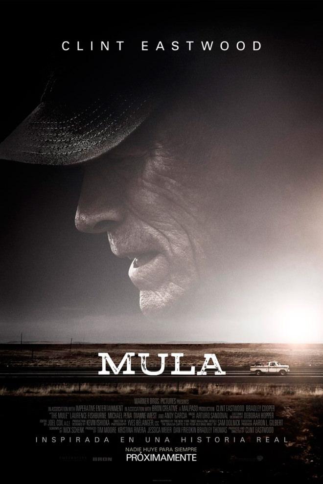 Poster de la Película: Mula