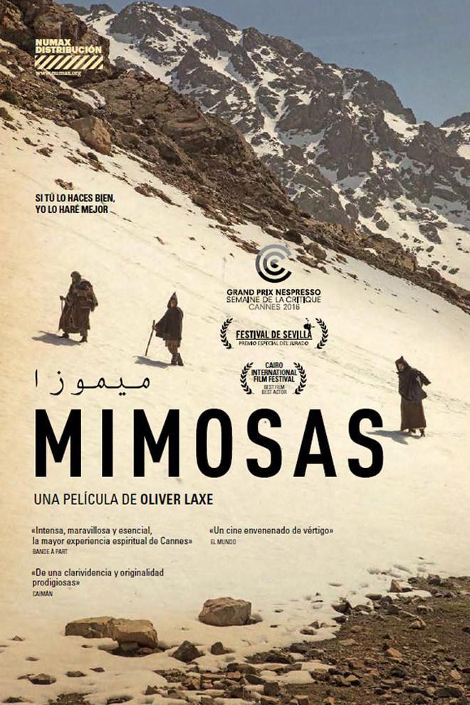 Poster de la Película: Mimosas