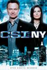 CSI: Nueva York