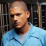 Wentworth Miller en el papel de Michael Scofield
